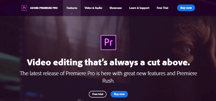 Adobe Premiere Pro popular video editing software
